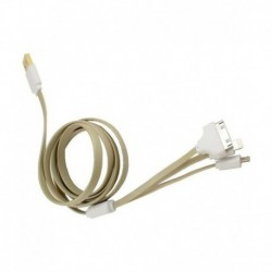Callmate 4-in-1 USB Data Cable For Apple iPad 2 Golden